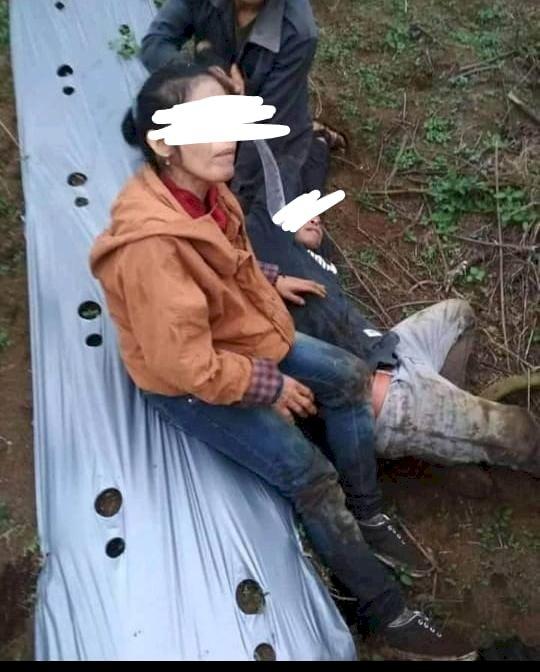 Curi Kentang dan Cabai, Pasangan Suami Istri di Kerinci Ini Ditangkap Warga