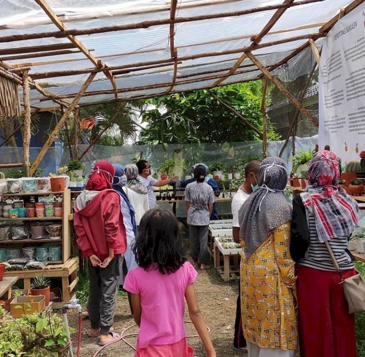 Berawal dari Hobi, Wanita Asal Maumere Ini Bisa Hasilkan Omzet Besar dari Jualan Kaktus