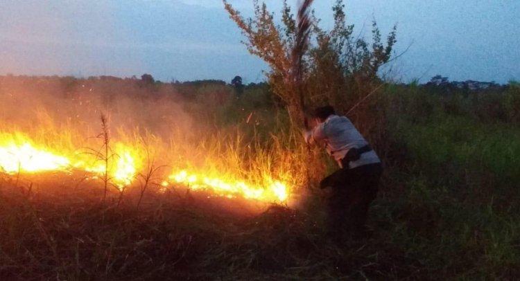 Lahan Gambut di Kecamatan Kumpeh Terbakar, Polisi: Penyebab Kebakaran Belum Diketahui