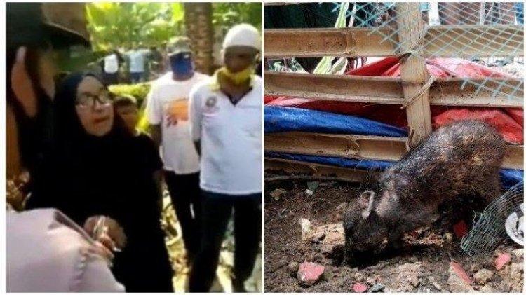 Duh! Ibu Wati Viral Tuding Tetangga Kaya karena Babi Ngepet, Ternyata Buka Praktik Paranormal