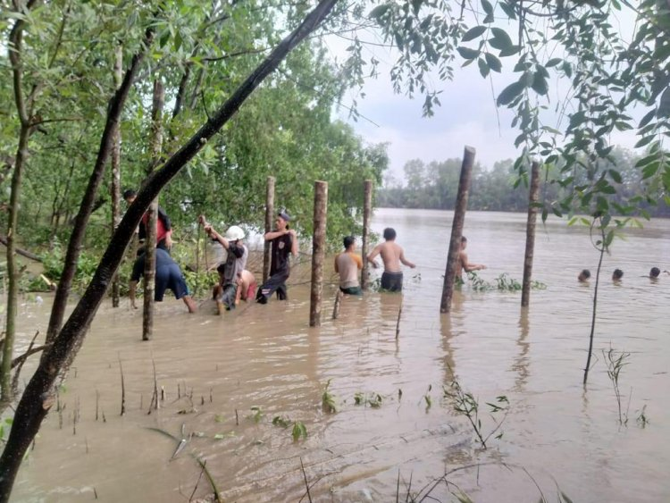 Ekowisata Mangrove di Desa Kuala Lagan Kabupaten Tanjabtim Diinisiasi Akademi Mahasiswa KKN Kebangsaan