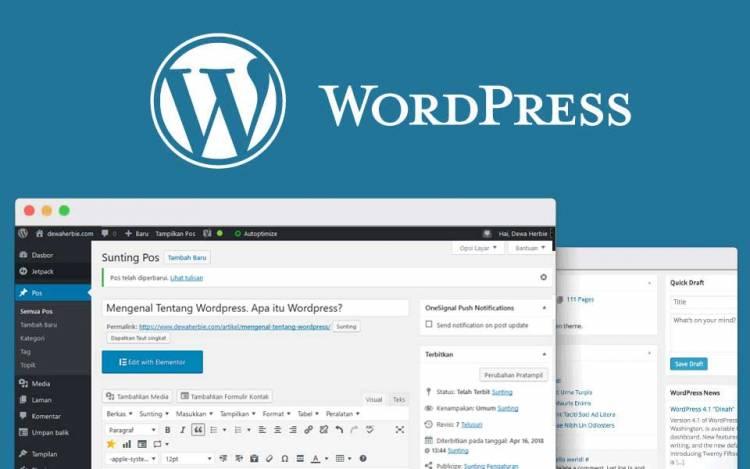Mengenal Apa itu CMS WordPress