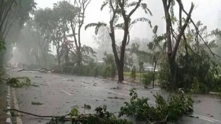 Waspada! Hujan Lebat Disertai Petir & Angin Kencang akan Melanda Jambi