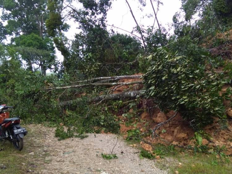 Hujan Deras, Tebing Pembatas Dua Desa di Merangin Longsor