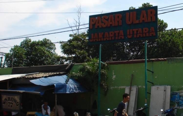 Menjelajah Tempat Bersejarah di Ujung Utara Kota Jakarta