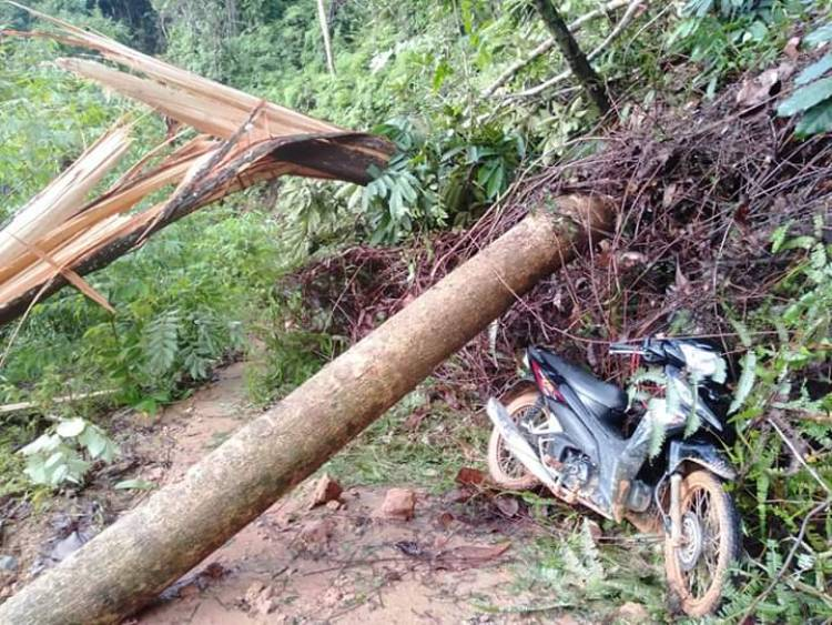 Empat Desa di Sarolangun Terisolir, Akses Jalan Marga Bukit Bulan Tertutup Longsor