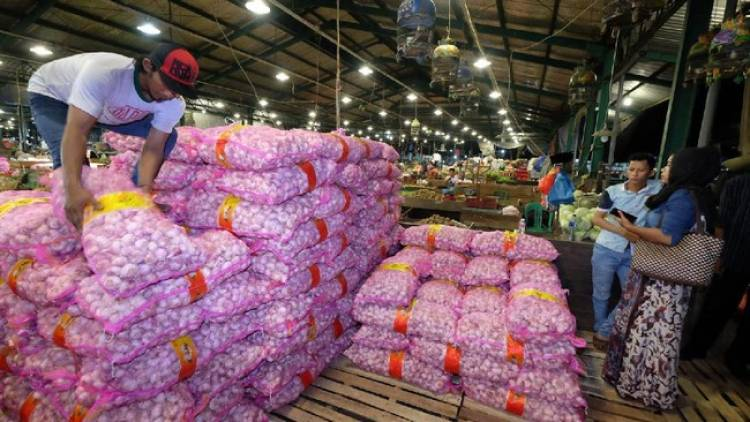 Duhh! Impor Bawang Putih Hingga 100 Ribu Ton, Begini Kata Pengamat
