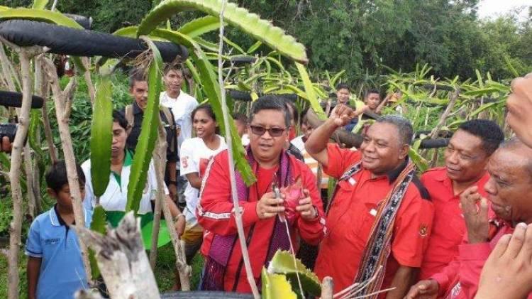 Soal Ucapan Prabowo, Hasto: Kita Tak Beri Toleransi Koruptor, Apalagi Beri Dana Pensiun