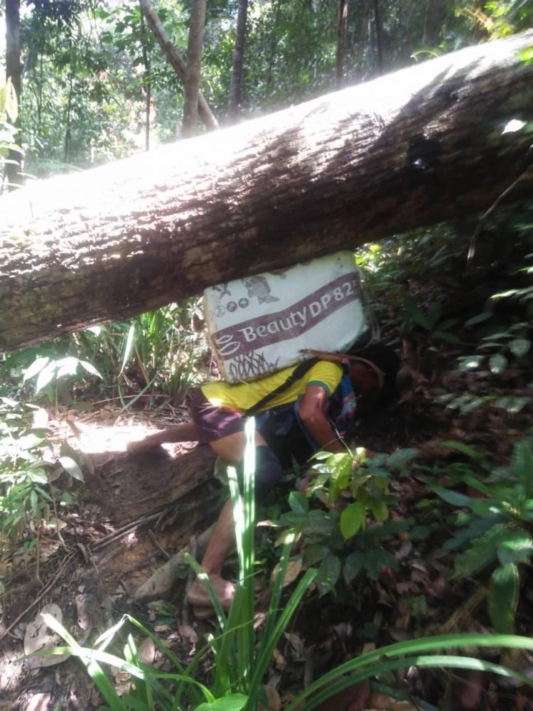 Melintas Hutan, Petugas Logistik Pemilu Pikul Kotak Suara Hingga 7 Jam