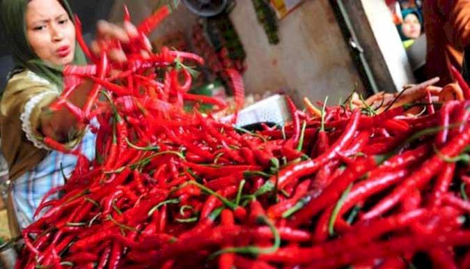Harga Cabai Merah Meroket Rp80.000/Kg