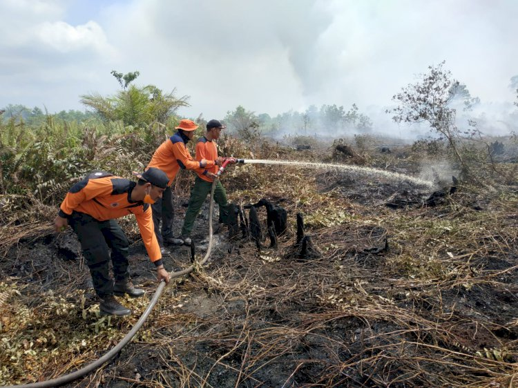 Tim Berjibaku Padamkan Api di Puluhan Hektar Lahan di Muaro Jambi