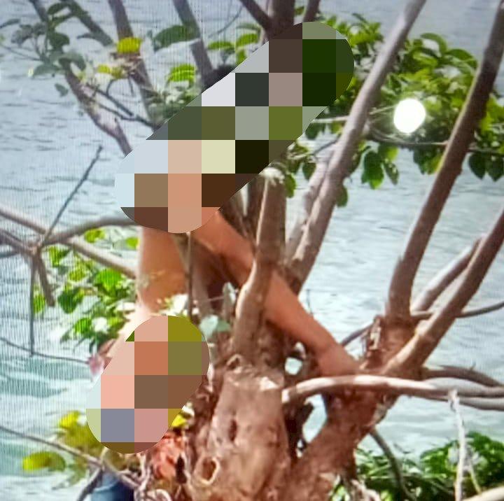 Heboh!! Pria Ditemukan Tewas Gantung Diri di Tepi Danau Pauh