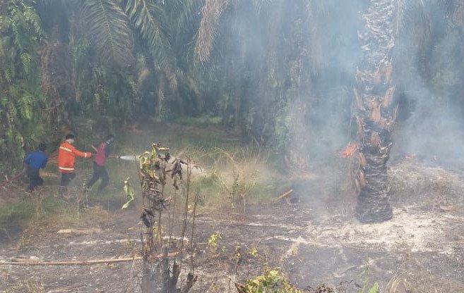 Kapolres Merangin Tak Menampik Kebakaran Lahan Terus Meningkat