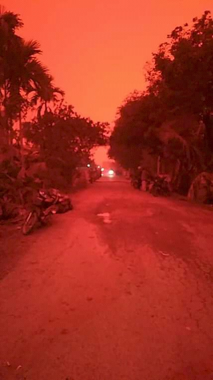 Jambi Diselimuti Kabut Asap, Begini Cara Menghindari Bahaya Polusi Udara