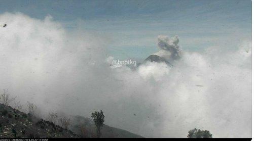 Gunung Merapi Muntahkan Awan Panas Setinggi 800 Meter