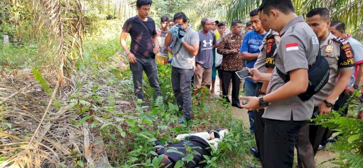 BREAKING NEWS!! Tukang Ojek Tewas Bersimbah Darah di Perkebunan Sawit, Diduga Korban Pembunuhan