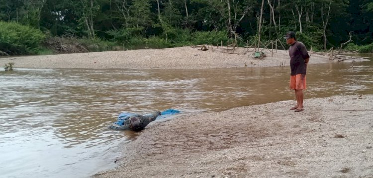 BREAKING NEWS! Warga Bungo Jambi Heboh Temukan Mayat Membusuk di Sungai